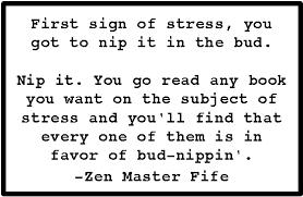 Zen Fife