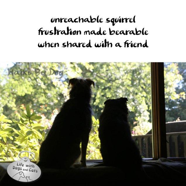 Bearable-